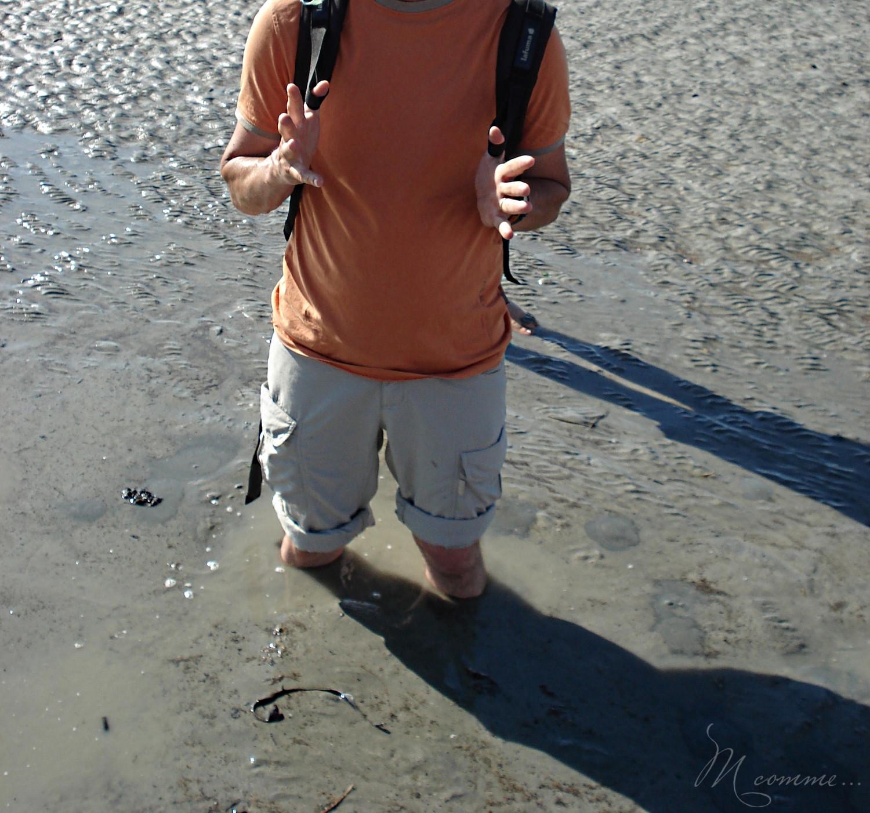 sable mouvant