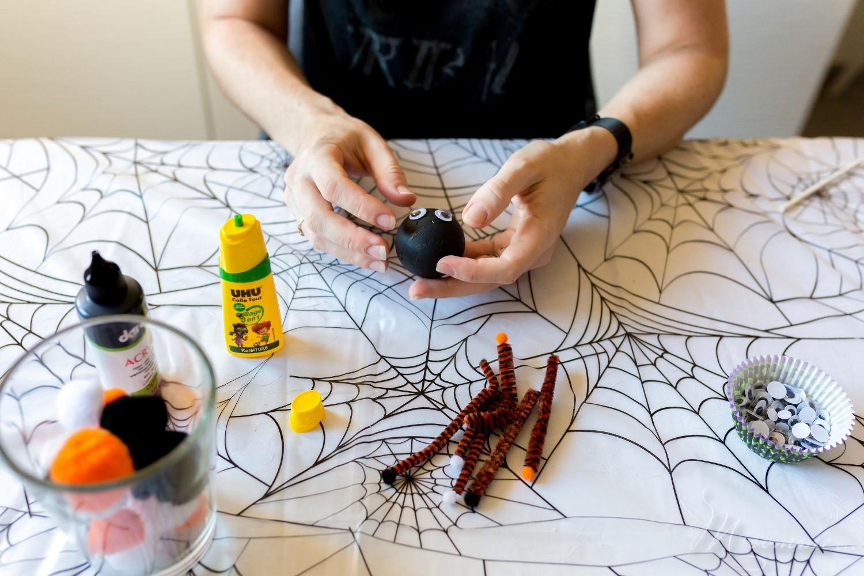 Araignée pompon