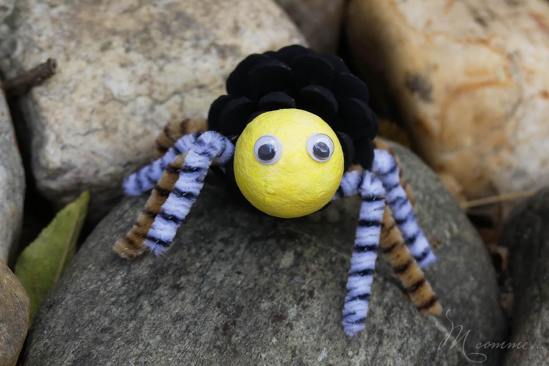 araignée pomme de pin