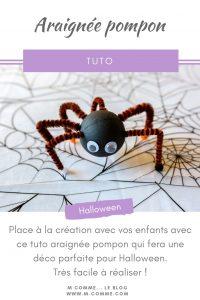 tuto araignée