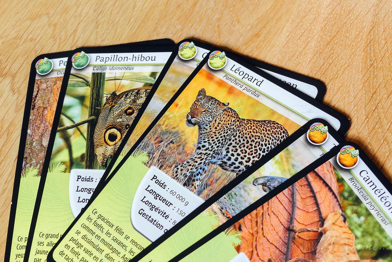 jeu défis nature les rois du camouflage bioviva