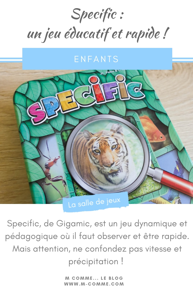 jeu specific gigamic