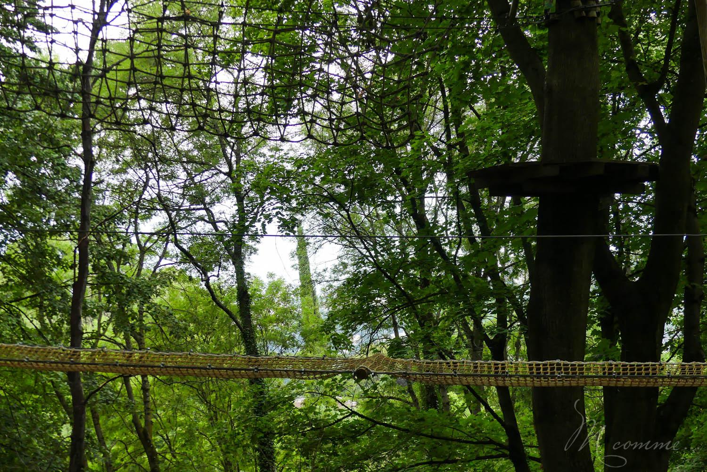 S'il y a bien une chose que l'on ne s'attend pas à voir à Fourvière, c'est bien une forêt cachant un parc de loisirs avec de nombreux parcours d'accrobranche. Et pourtant! Cet écrin de verdure offre un bel amusement pour les vacances ou les mercredis, avec au loin, Lyon centre à admirer. #accrobranche #lyon #fourviere #presquile #parcdeloisirs #pleinair #bellecour #famille #enfants #sortie #sortiralyon #franceaventures #franceaventureslyon #nature #ville #loisirs #anniversaire